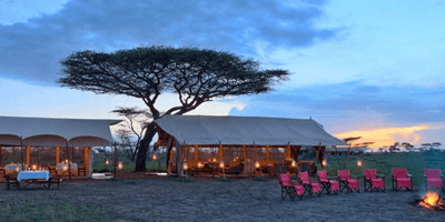 Tanzania Deluxe Lodge 11 Days